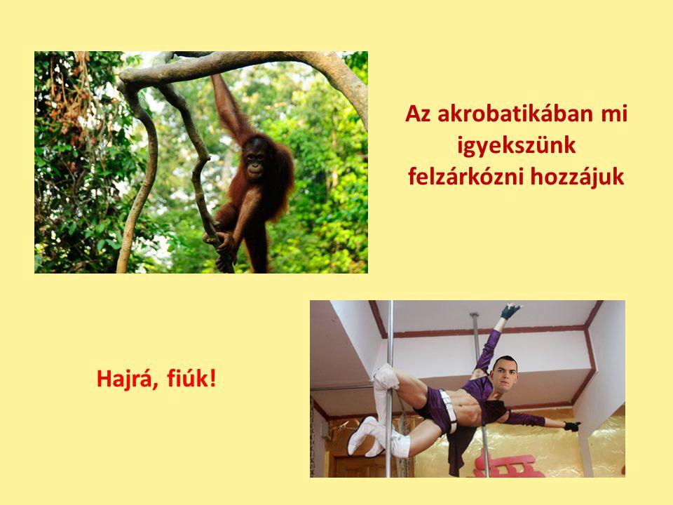 Az akrobatikában mi igyekszünk felzárkózni hozzájuk Hajrá, fiúk!
