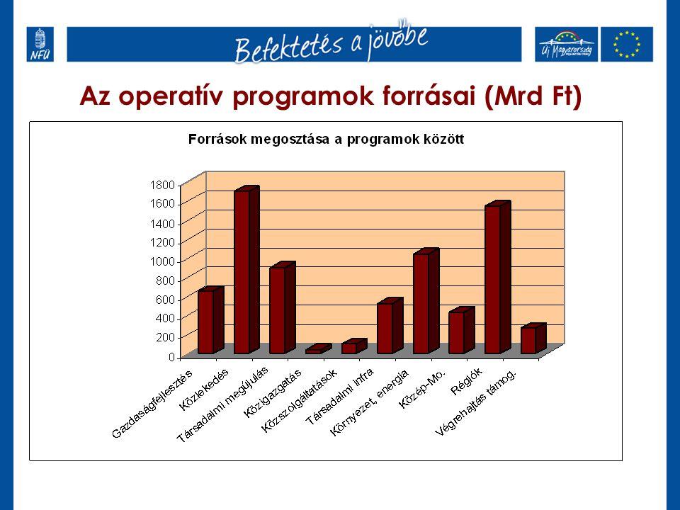 Humánerőforrás-fejlesztési operatív programok Társadalmi Megújulás Operatív Program (TÁMOP) Európai Szociális Alapból finanszírozandó humán- jellegű fejlesztések Társadalmi Infrastruktúra Operatív Program (TIOP) Európai Regionális Fejlesztési Alapból finanszírozandó – az TÁMOP-hoz kapcsolódó - infrastrukturális fejlesztések Az OP-k a Nemzeti Fejlesztési Ügynökség (Irányító Hatóságok) koordinációjával, az OKM, az SZMM, az EÜM együttműködésével készülnek.