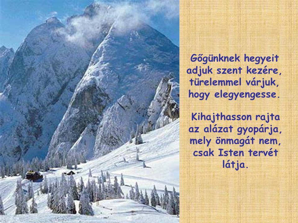 Gőgünknek hegyeit adjuk szent kezére, türelemmel várjuk, hogy elegyengesse. Kihajthasson rajta az alázat gyopárja, mely önmagát nem, csak Isten tervét