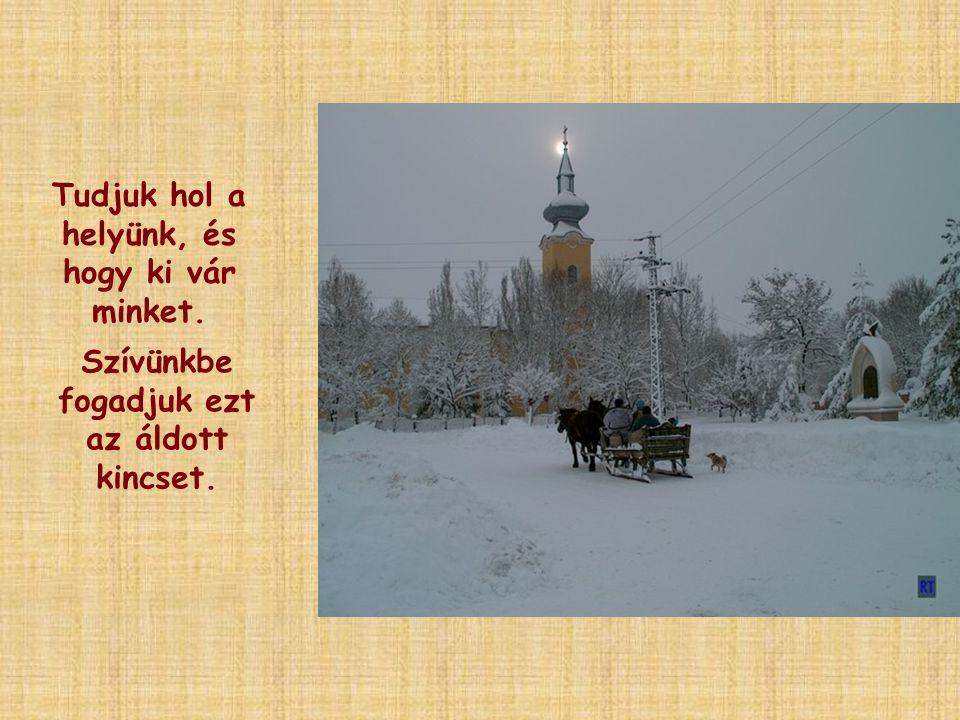Karácsony éjjelén az örök Szeretet vágyódó szívünkben életre születhet.