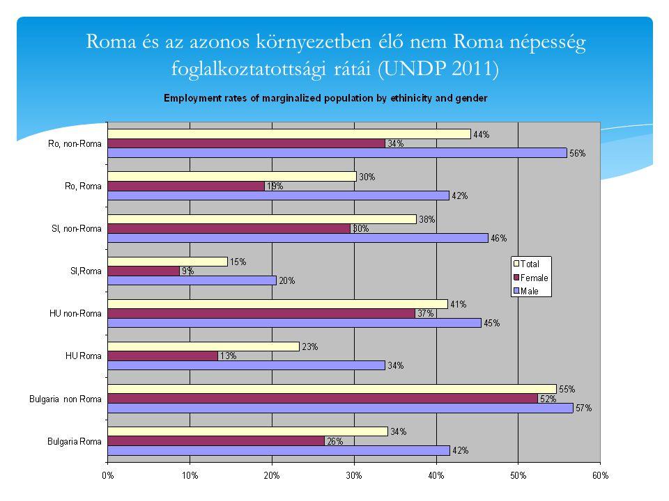 Iskolázottsági szint különbségei (UNDP 2011)