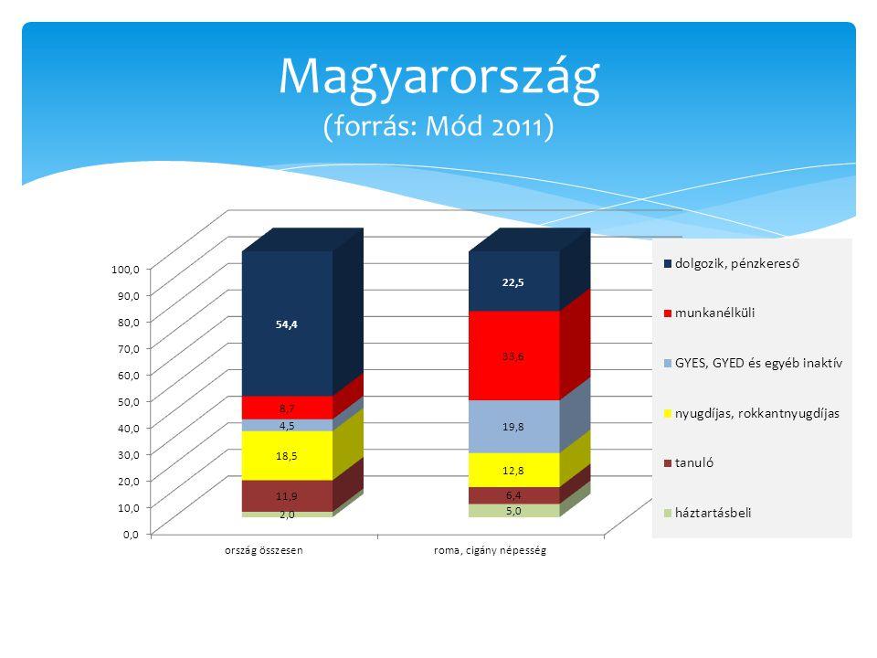 Roma/cigány népesség munkaerőpiaci részvétele hazánkban (forrás: Mód 2011)