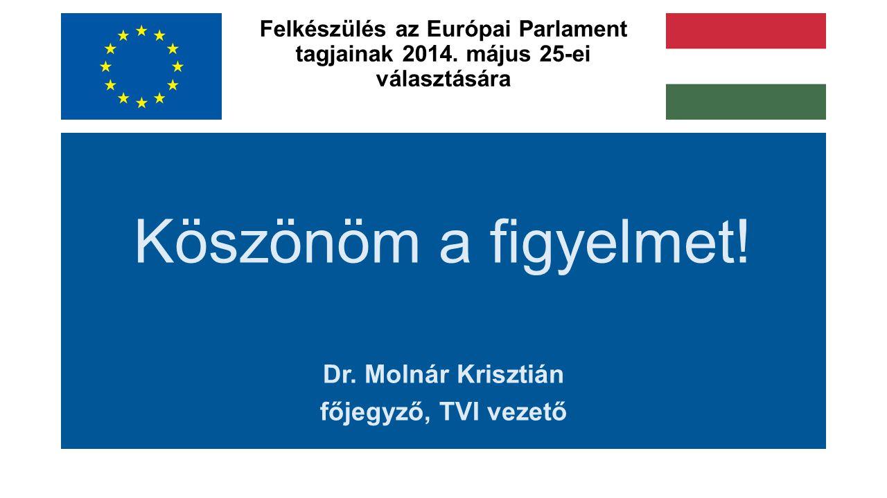 Felkészülés az Európai Parlament tagjainak 2014. május 25-ei választására Köszönöm a figyelmet.