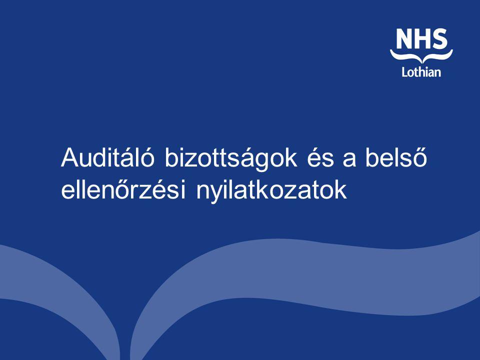 Auditáló bizottságok és a belső ellenőrzési nyilatkozatok