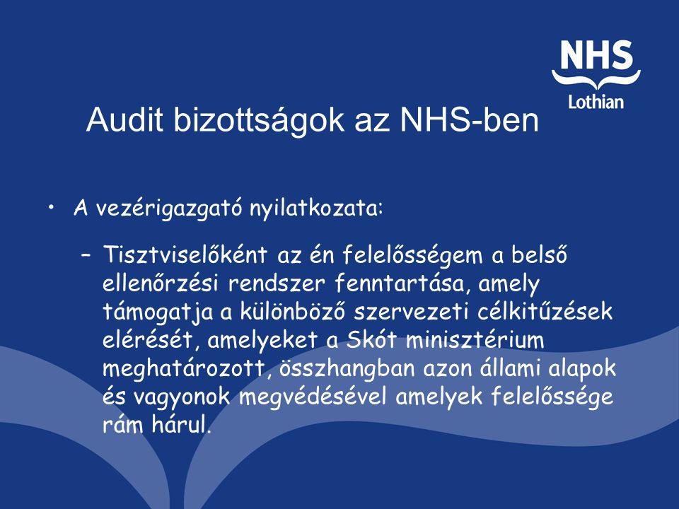 Audit bizottságok az NHS-ben A vezérigazgató nyilatkozata: –Tisztviselőként az én felelősségem a belső ellenőrzési rendszer fenntartása, amely támogatja a különböző szervezeti célkitűzések elérését, amelyeket a Skót minisztérium meghatározott, összhangban azon állami alapok és vagyonok megvédésével amelyek felelőssége rám hárul.