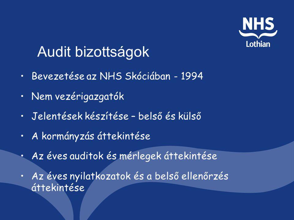 Audit bizottságok Bevezetése az NHS Skóciában - 1994 Nem vezérigazgatók Jelentések készítése – belső és külső A kormányzás áttekintése Az éves auditok és mérlegek áttekintése Az éves nyilatkozatok és a belső ellenőrzés áttekintése