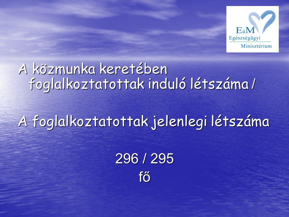 A közmunka keretében foglalkoztatottak induló létszáma / A foglalkoztatottak jelenlegi létszáma 296 / 295 fő