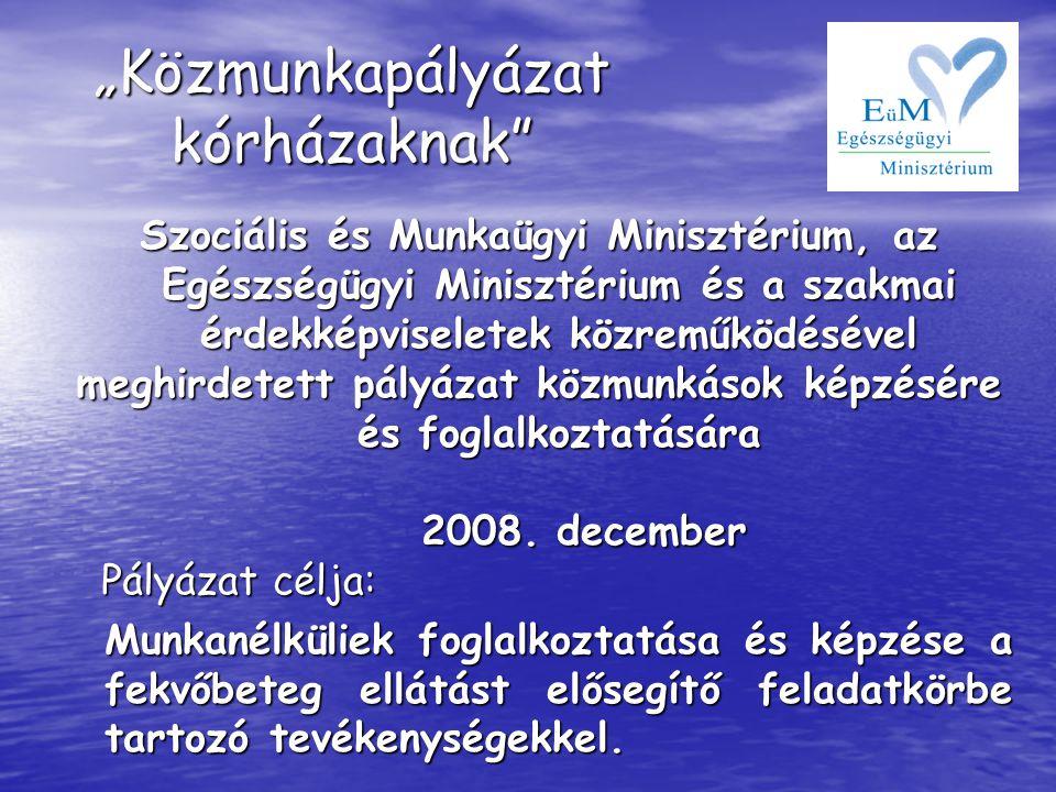 Szociális és Munkaügyi Minisztérium, az Egészségügyi Minisztérium és a szakmai érdekképviseletek közreműködésével meghirdetett pályázat közmunkások ké