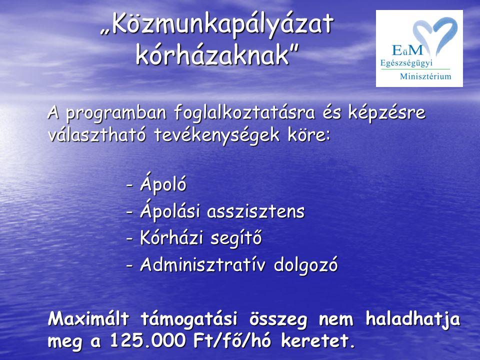 A programban foglalkoztatásra és képzésre választható tevékenységek köre: A programban foglalkoztatásra és képzésre választható tevékenységek köre: -