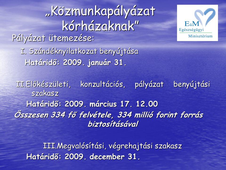 Pályázat ütemezése: Pályázat ütemezése: I. Szándéknyilatkozat benyújtása I. Szándéknyilatkozat benyújtása Határidő: 2009. január 31. Határidő: 2009. j