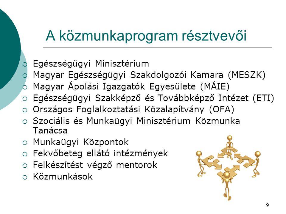 9 A közmunkaprogram résztvevői  Egészségügyi Minisztérium  Magyar Egészségügyi Szakdolgozói Kamara (MESZK)  Magyar Ápolási Igazgatók Egyesülete (MÁ