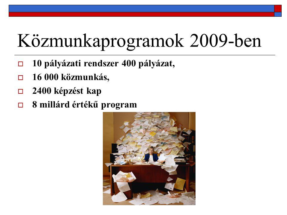 Közmunkaprogramok 2009-ben  10 pályázati rendszer 400 pályázat,  16 000 közmunkás,  2400 képzést kap  8 millárd értékű program