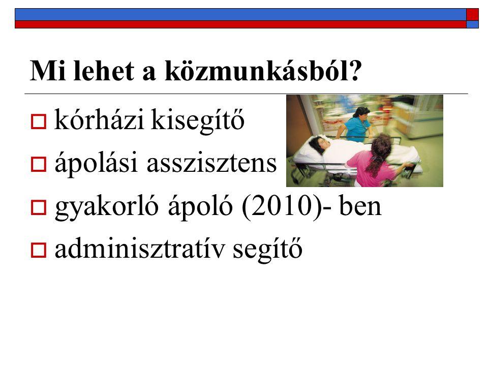 Mi lehet a közmunkásból?  kórházi kisegítő  ápolási asszisztens  gyakorló ápoló (2010)- ben  adminisztratív segítő