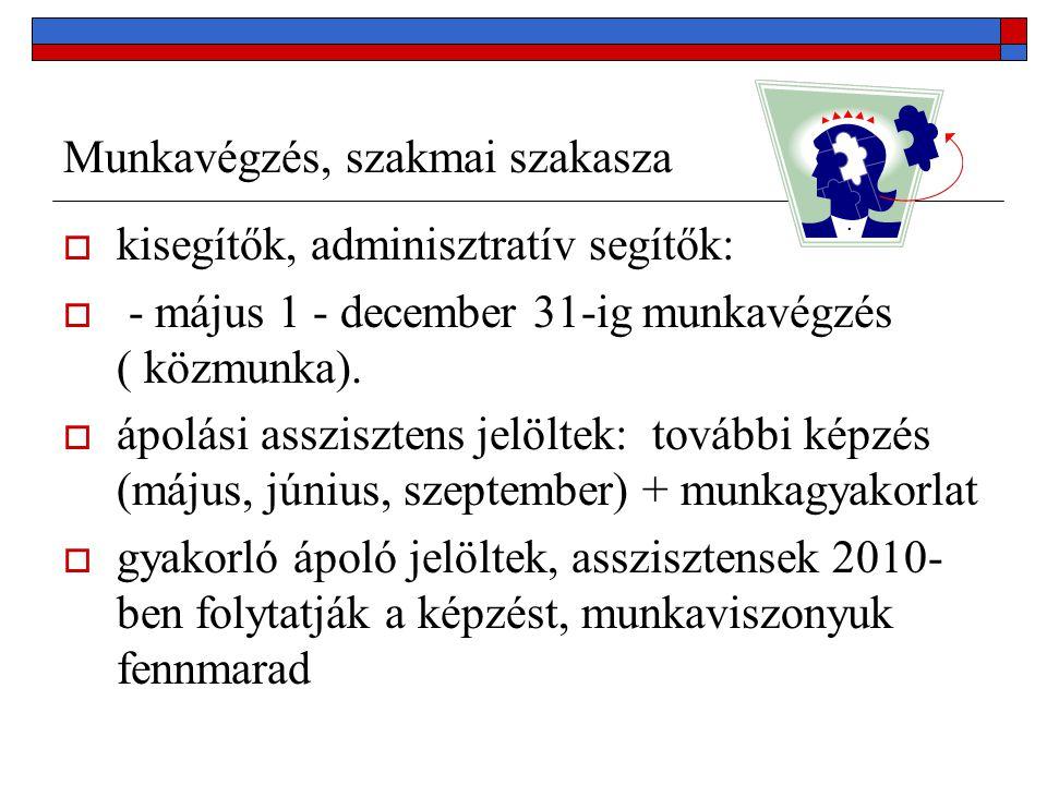 Munkavégzés, szakmai szakasza  kisegítők, adminisztratív segítők:  - május 1 - december 31-ig munkavégzés ( közmunka).  ápolási asszisztens jelölte
