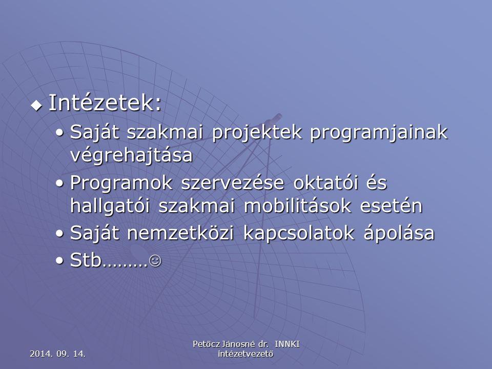 Egyéni szakmai projektek A projekt teljeskörű menedzselése A projekt teljeskörű menedzselése Ld.:projektfelelős feladatai Ld.:projektfelelős feladatai 2014.