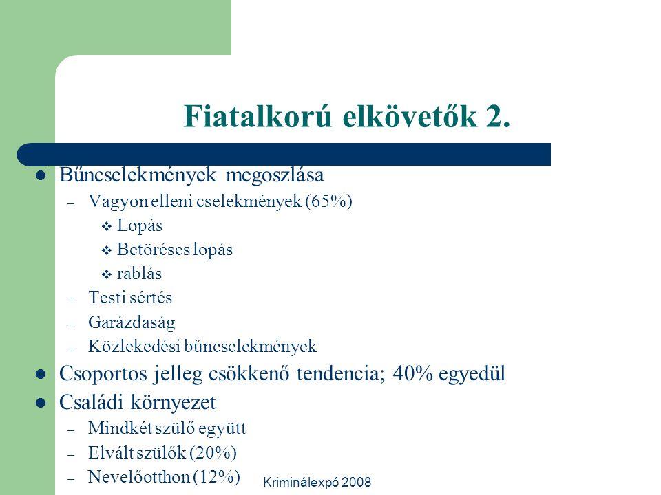 Kriminálexpó 2008 Fiatalkorú elkövetők 2. Bűncselekmények megoszlása – Vagyon elleni cselekmények (65%)  Lopás  Betöréses lopás  rablás – Testi sér