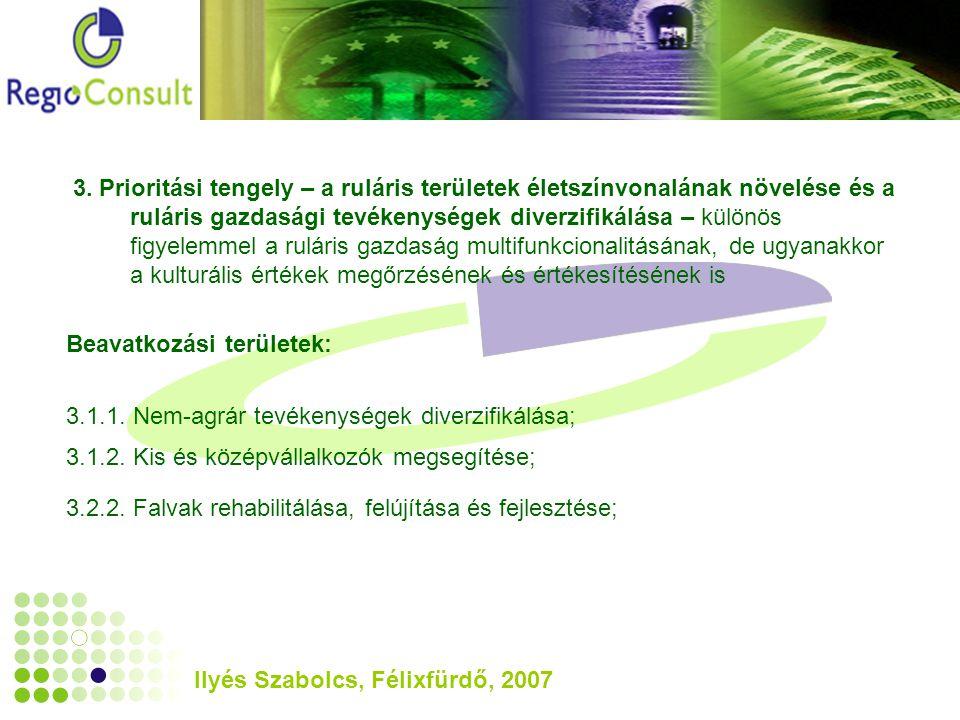Ilyés Szabolcs, Félixfürdő, 2007 3.