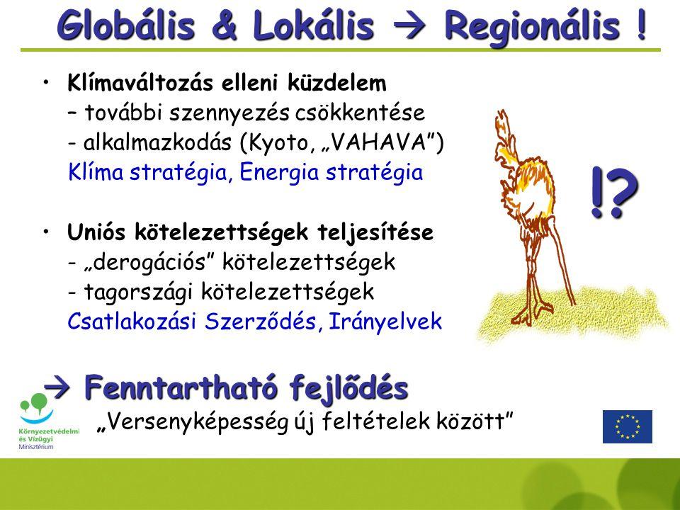 Globális & Lokális  Regionális .