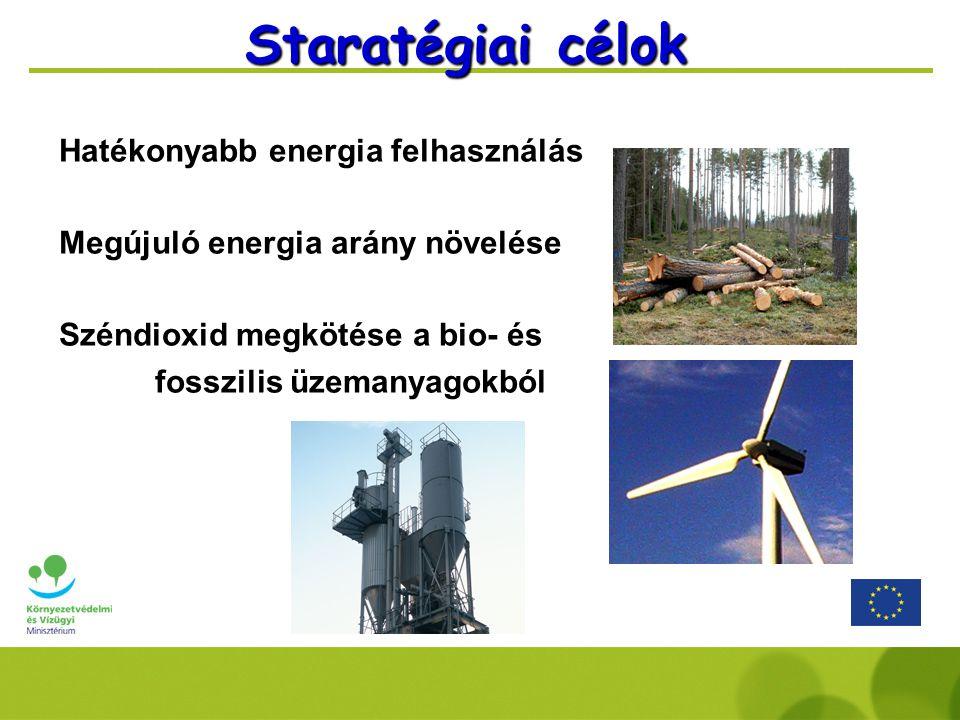 Hatékonyabb energia felhasználás Megújuló energia arány növelése Széndioxid megkötése a bio- és fosszilis üzemanyagokból Staratégiai célok