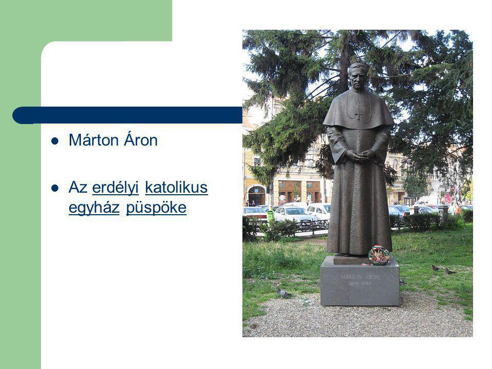 Márton Áron Az erdélyi katolikus egyház püspökeerdélyikatolikus egyházpüspöke