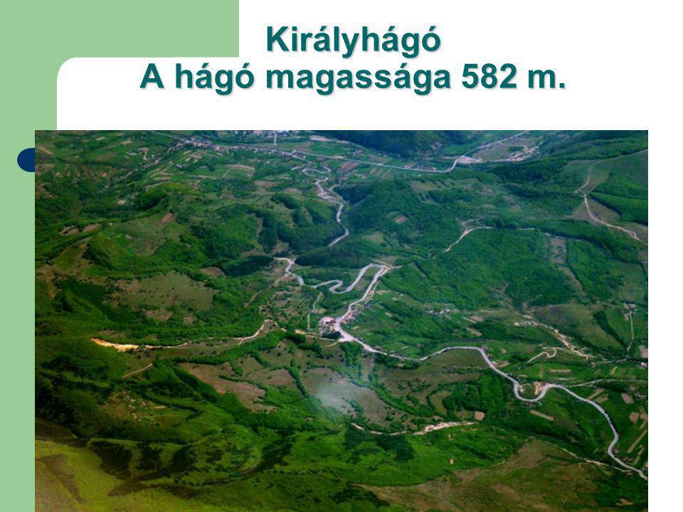 Királyhágó A hágó magassága 582 m.