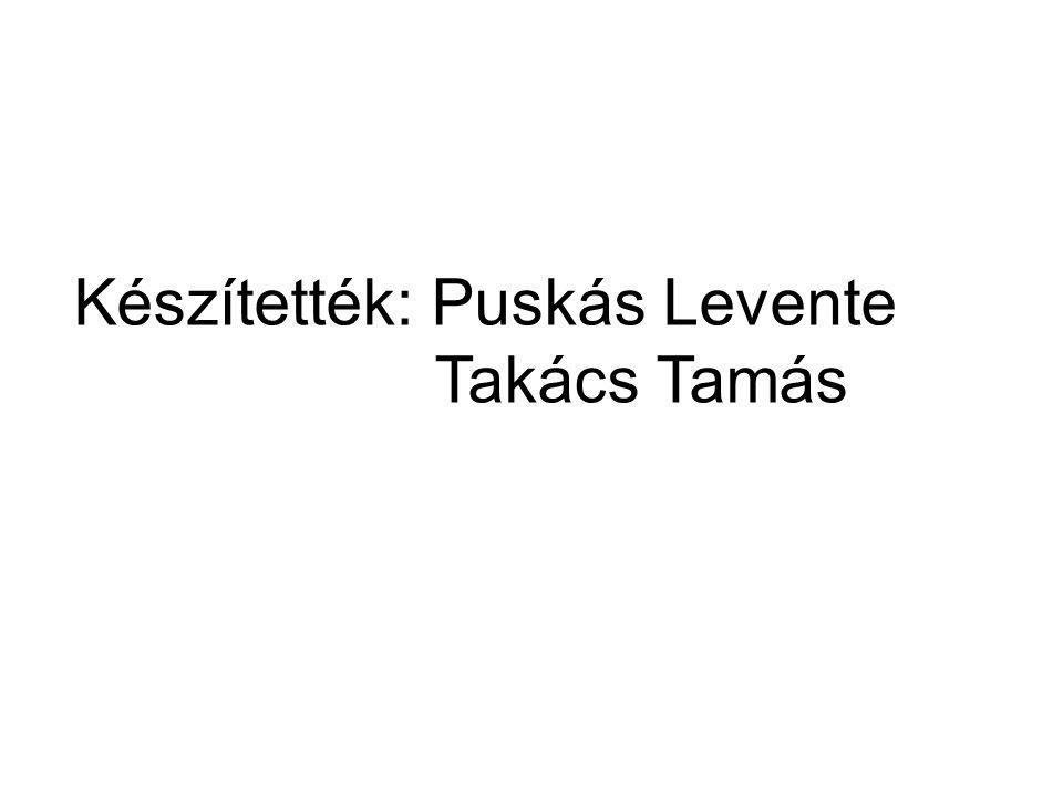 Készítették: Puskás Levente Takács Tamás