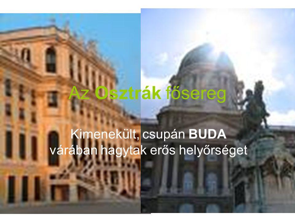 Az Osztrák fősereg Kimenekült, csupán BUDA várában hagytak erős helyőrséget