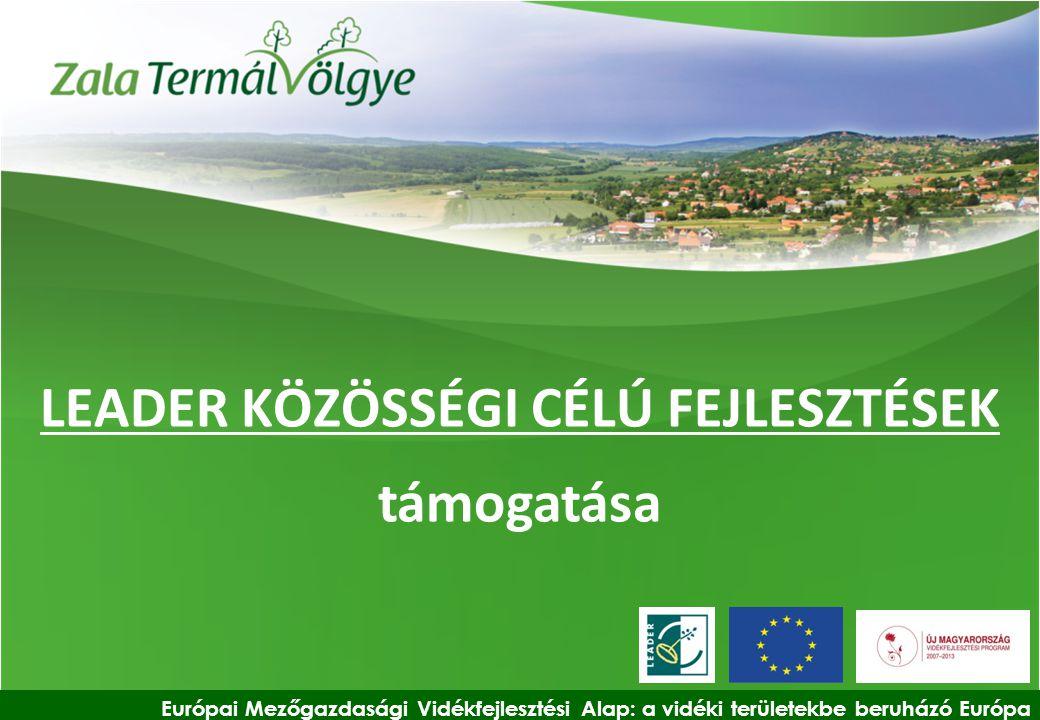 LEADER KÖZÖSSÉGI CÉLÚ FEJLESZTÉSEK támogatása Európai Mezőgazdasági Vidékfejlesztési Alap: a vidéki területekbe beruházó Európa