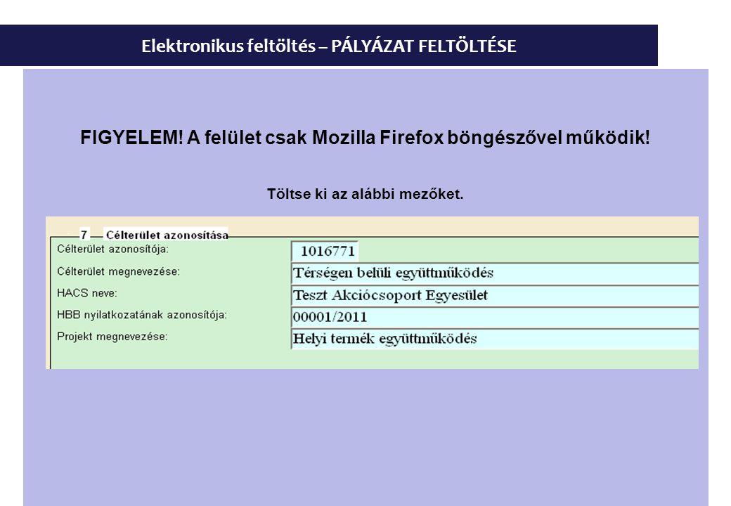 Elektronikus feltöltés – PÁLYÁZAT FELTÖLTÉSE FIGYELEM! A felület csak Mozilla Firefox böngészővel működik! Töltse ki az alábbi mezőket.