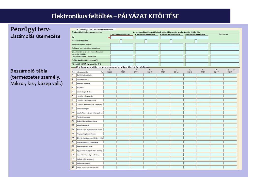 Elektronikus feltöltés – PÁLYÁZAT KITÖLTÉSE Pénzügyi terv- Elszámolás ütemezése Beszámoló tábla (természetes személy, Mikro-, kis-, közép váll.)