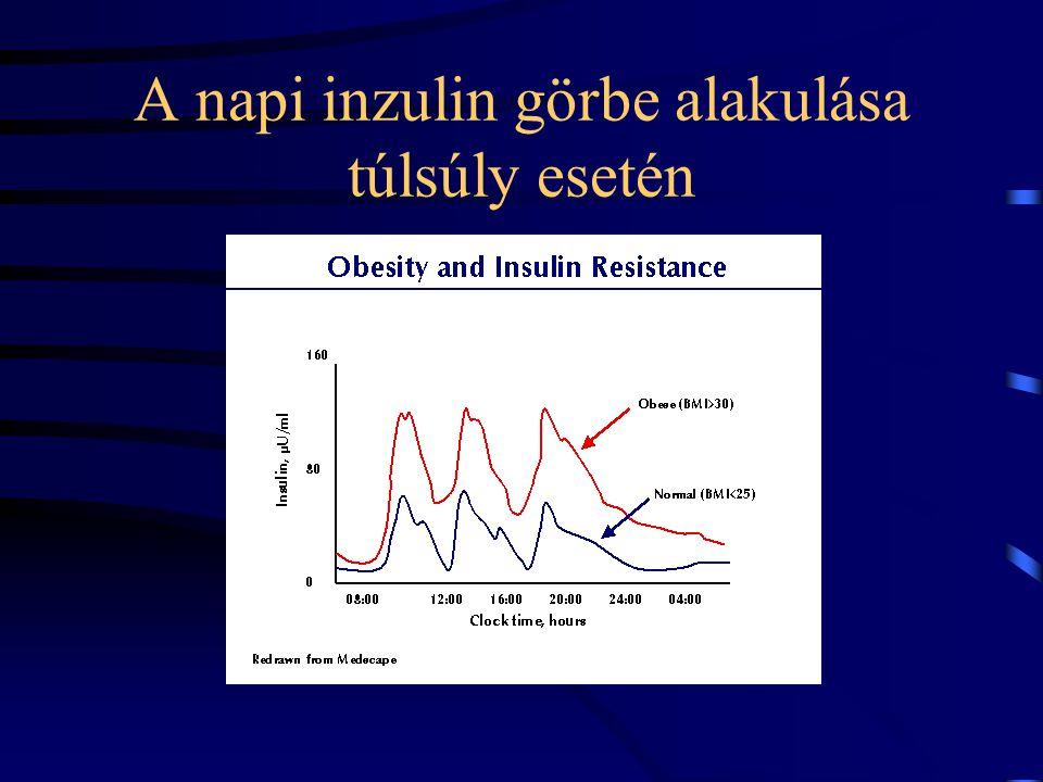 A napi inzulin görbe alakulása túlsúly esetén