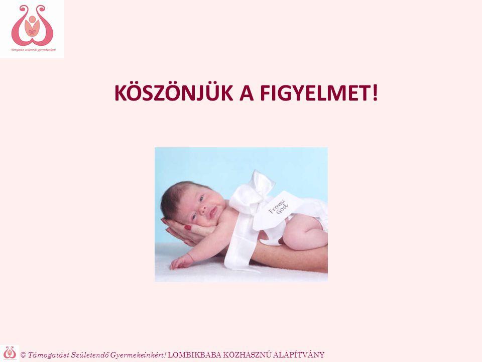 © Támogatást Születendő Gyermekeinkért! LOMBIKBABA KÖZHASZNÚ ALAPÍTVÁNY KÖSZÖNJÜK A FIGYELMET!