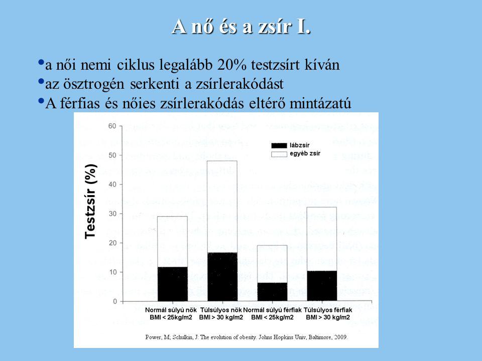 A nő és a zsír I. a női nemi ciklus legalább 20% testzsírt kíván az ösztrogén serkenti a zsírlerakódást A férfias és nőies zsírlerakódás eltérő mintáz