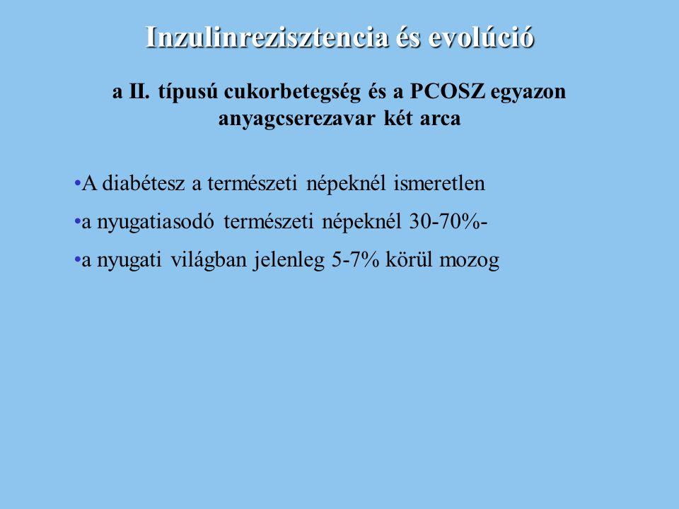 Inzulinrezisztencia és evolúció a II. típusú cukorbetegség és a PCOSZ egyazon anyagcserezavar két arca A diabétesz a természeti népeknél ismeretlen a