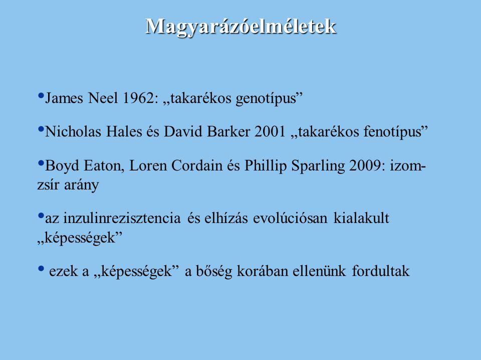 """Magyarázóelméletek James Neel 1962: """"takarékos genotípus"""" Nicholas Hales és David Barker 2001 """"takarékos fenotípus"""" Boyd Eaton, Loren Cordain és Phill"""