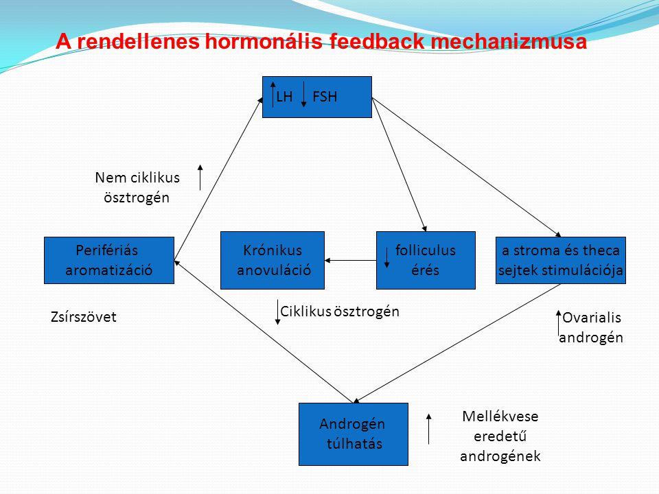 LH FSH folliculus érés Androgén túlhatás Perifériás aromatizáció a stroma és theca sejtek stimulációja Krónikus anovuláció Zsírszövet Nem ciklikus ösz