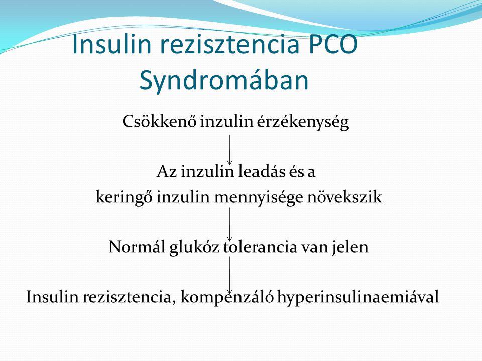 Insulin rezisztencia PCO Syndromában Csökkenő inzulin érzékenység Az inzulin leadás és a keringő inzulin mennyisége növekszik Normál glukóz tolerancia
