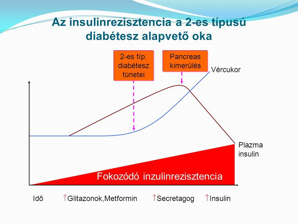 Fokozódó inzulinrezisztencia Plazma insulin Vércukor Pancreas kimerülés 2-es típ. diabétesz tünetei Az insulinrezisztencia a 2-es típusú diabétesz ala
