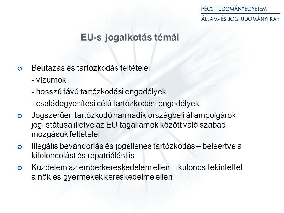 EU-s jogalkotás témái Beutazás és tartózkodás feltételei - vízumok - hosszú távú tartózkodási engedélyek - családegyesítési célú tartózkodási engedélyek Jogszerűen tartózkodó harmadik országbeli állampolgárok jogi státusa illetve az EU tagállamok között való szabad mozgásuk feltételei Illegális bevándorlás és jogellenes tartózkodás – beleértve a kitoloncolást és repatriálást is Küzdelem az emberkereskedelem ellen – különös tekintettel a nők és gyermekek kereskedelme ellen