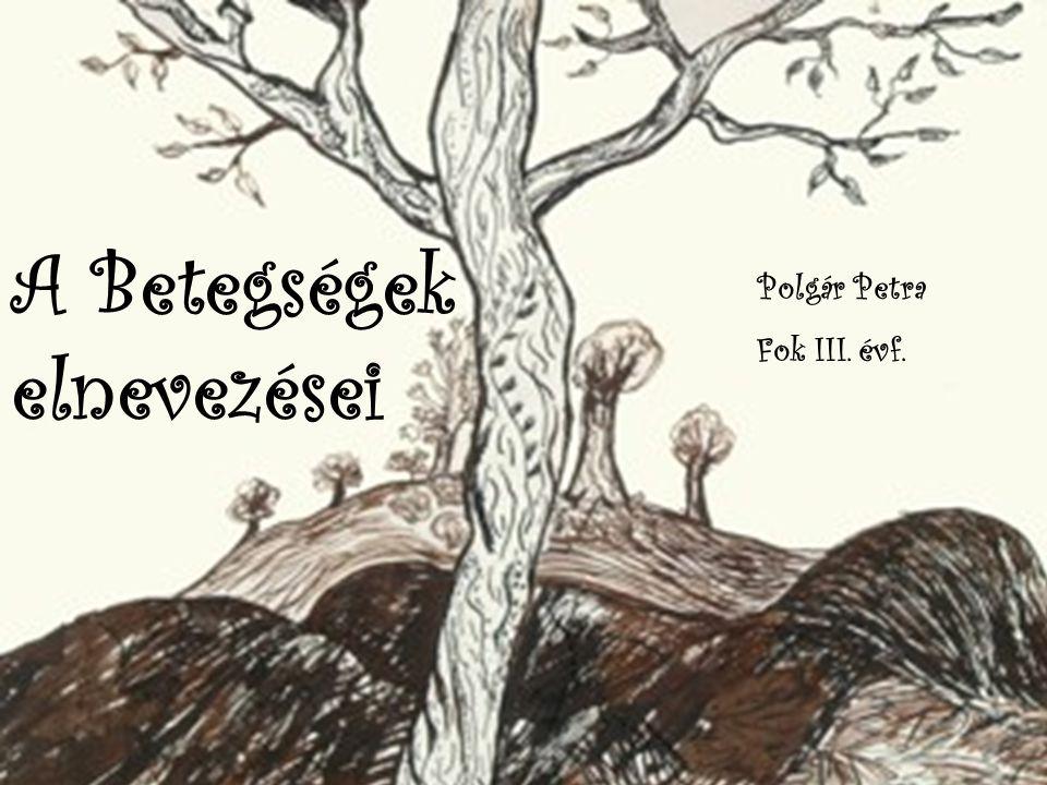 A Betegségek elnevezései Polgár Petra Fok III. évf.