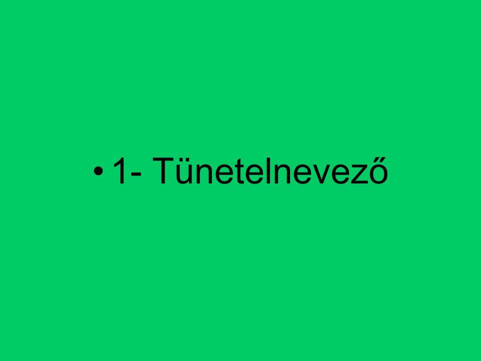 Umberto Eco: A tökéletes nyelv XVI.
