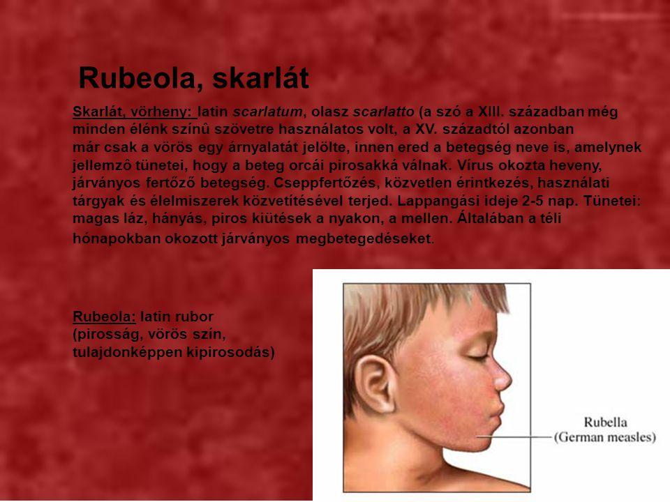 Rubeola, skarlát Rubeola: latin rubor (pirosság, vörös szín, tulajdonképpen kipirosodás) Skarlát, vörheny: latin scarlatum, olasz scarlatto (a szó a XIII.