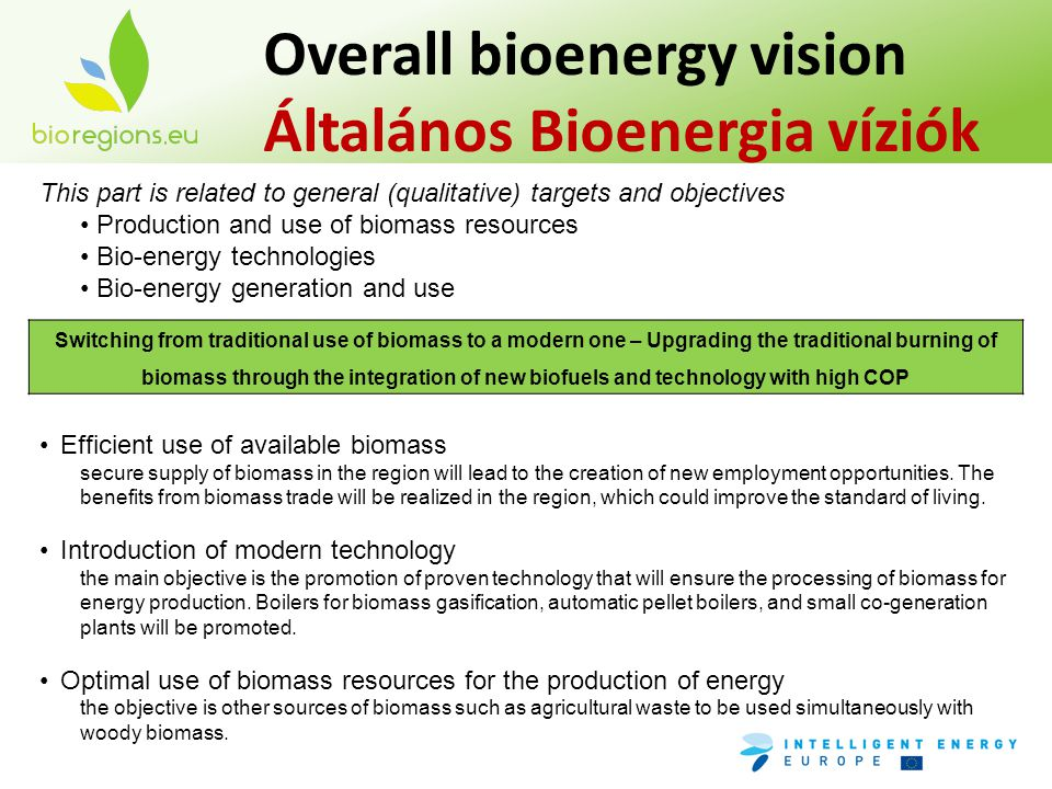 This part is related to general (qualitative) targets and objectives Production and use of biomass resources Bio-energy technologies Bio-energy genera