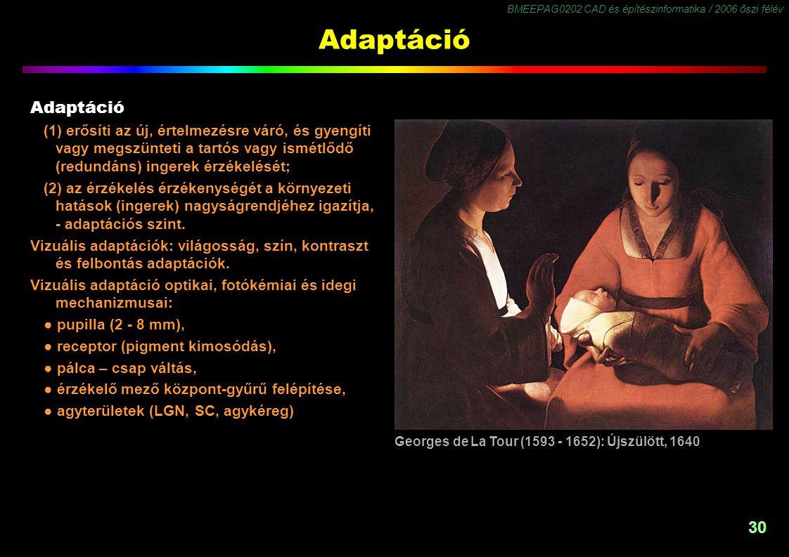 BMEEPAG0202 CAD és építészinformatika / 2006 őszi félév 30 Adaptáció (1) erősíti az új, értelmezésre váró, és gyengíti vagy megszünteti a tartós vagy