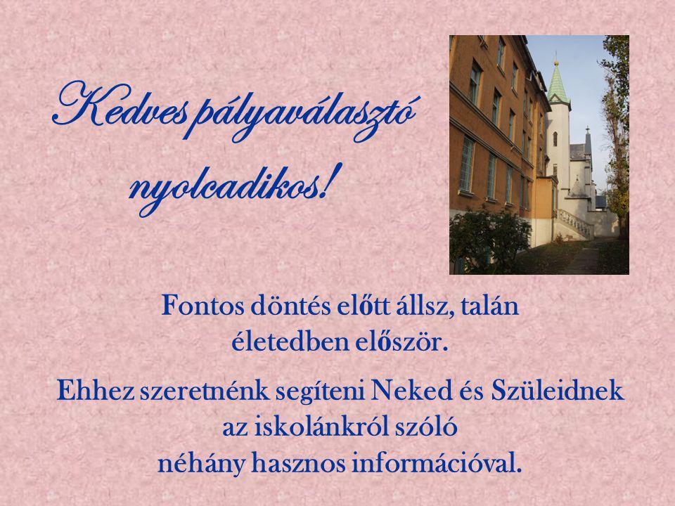 A Pesterzsébeti Közgazdasági Szakközépiskola és Szakiskola 1964 óta áll a közoktatás szolgálatában.