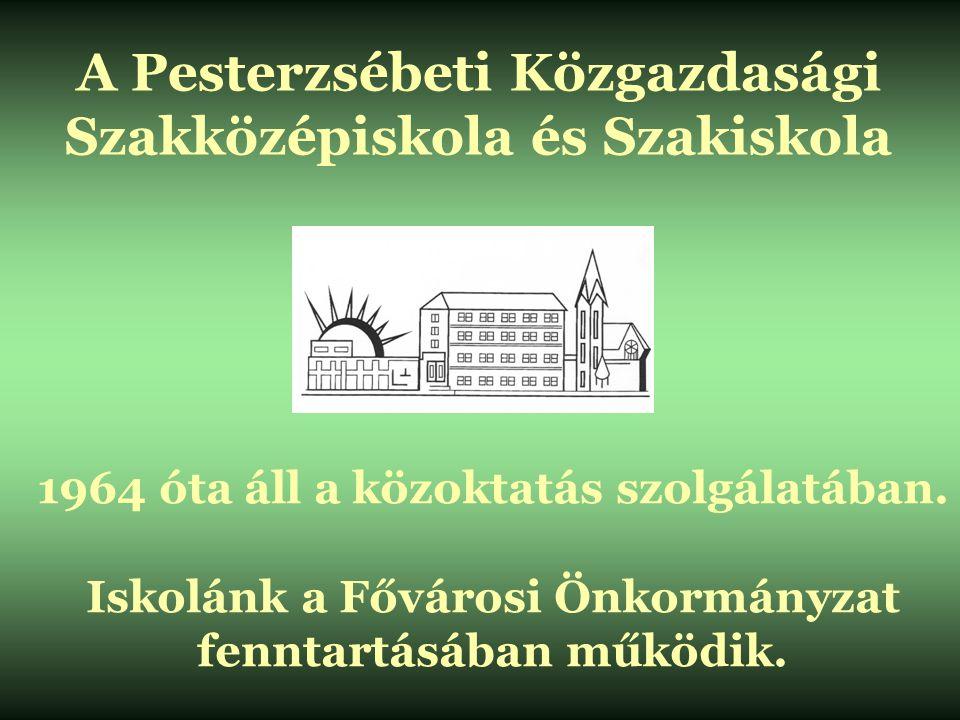 A Pesterzsébeti Közgazdasági Szakközépiskola és Szakiskola 1964 óta áll a közoktatás szolgálatában. Iskolánk a Fővárosi Önkormányzat fenntartásában mű