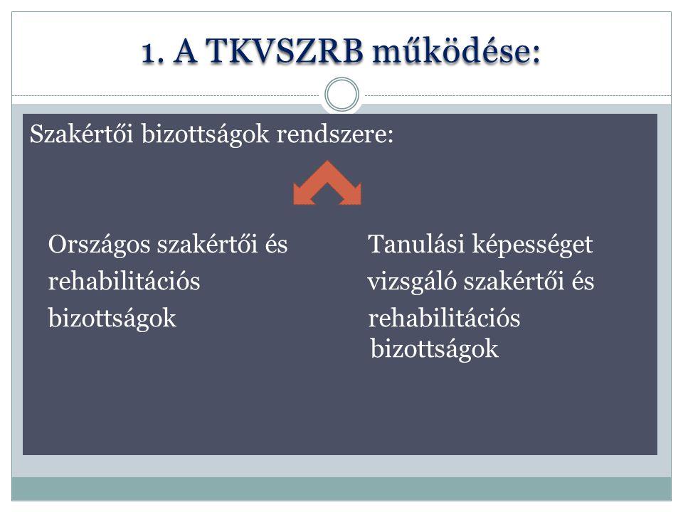 1. A TKVSZRB működése: Szakértői bizottságok rendszere: Országos szakértői és Tanulási képességet rehabilitációs vizsgáló szakértői és bizottságok reh