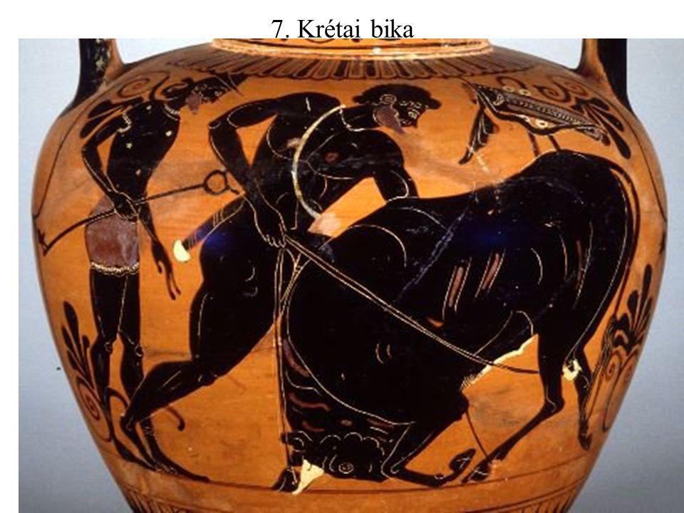 7. Krétai bika