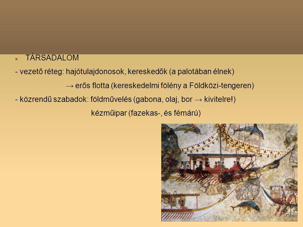 TÁRSADALOM - vezető réteg: hajótulajdonosok, kereskedők (a palotában élnek) → erős flotta (kereskedelmi fölény a Földközi-tengeren) - közrendű szabado