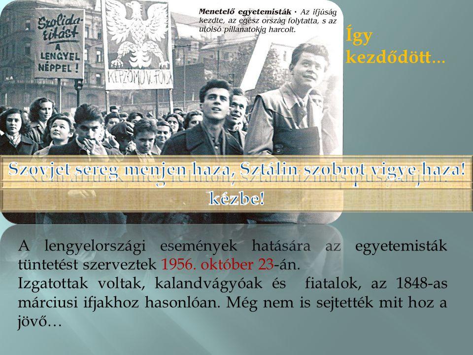 Így kezdődött … A lengyelországi események hatására az egyetemisták tüntetést szerveztek 1956.